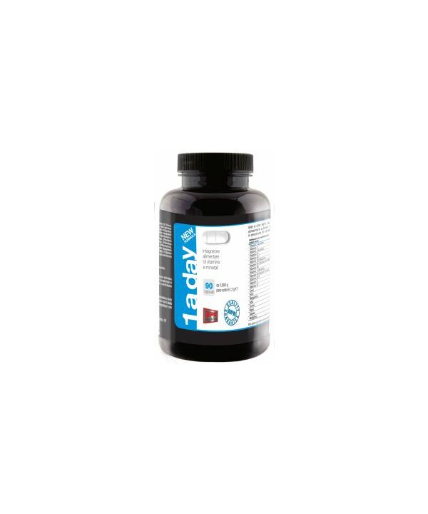 1 A DAY NEW FORMULA - 90cps