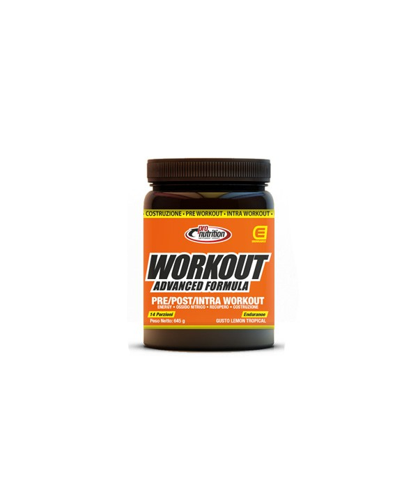 PRONUTRITION WORKOUT 645G
