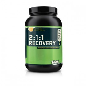 2:1:1 RECOVERY 1678g