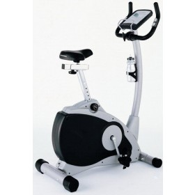 Schwinn 101A Upright Exercise Bike