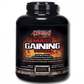 MASS GAINER POWDER 2900g