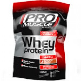 PROACTION WHEY PROTEIN 420G