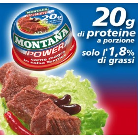 MONTANA POWER IN SALSA TEXMEX