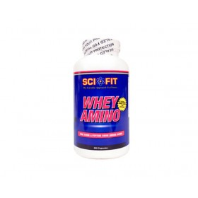 WHEY AMINO 500 SCIFIT